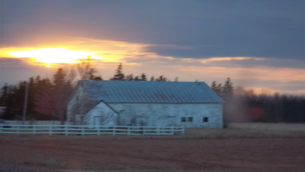 barn in Prince Edward Island
